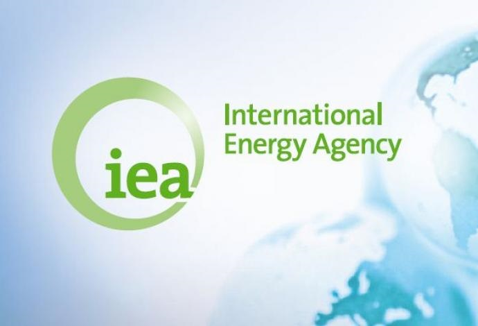 What Is International Energy Agency?
